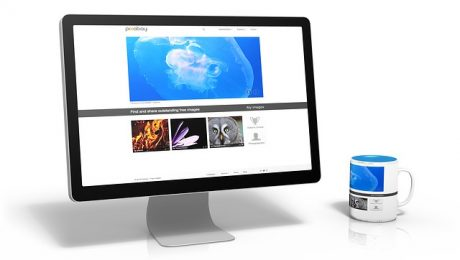 Perbedaan website statis dan website dinamis