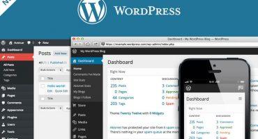 Tips Memilih Tema WordPress