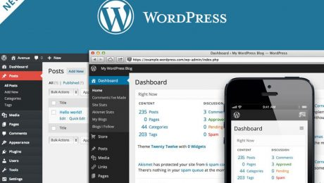 Tips Memilih Tema WordPress